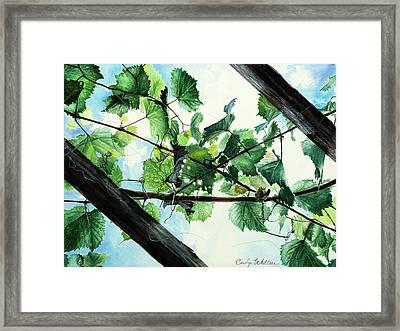 Biltmore Grapevines Overhead Framed Print