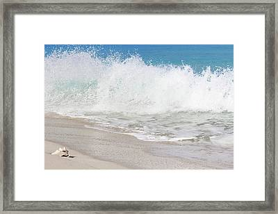 Bimini Wave Sequence 2 Framed Print