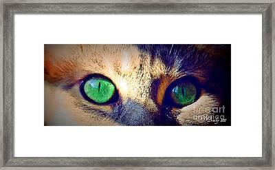 Bink Eyes Framed Print