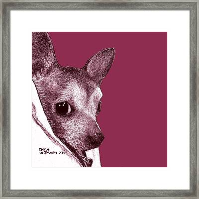 Binky In Magenta Framed Print by Lorraine Zaloom