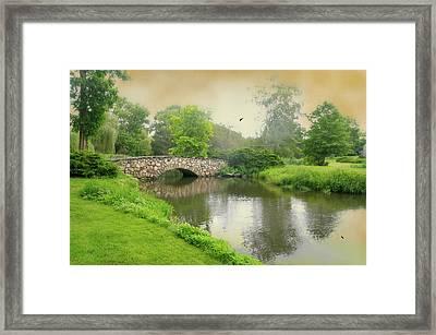 Binney Park Spotlight Framed Print by Diana Angstadt