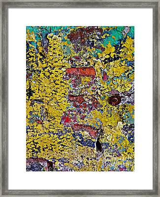 Biography Of A Wall 15 Framed Print by Sarah Loft