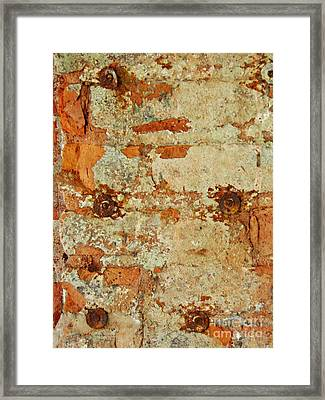 Biography Of A Wall 19 Framed Print by Sarah Loft