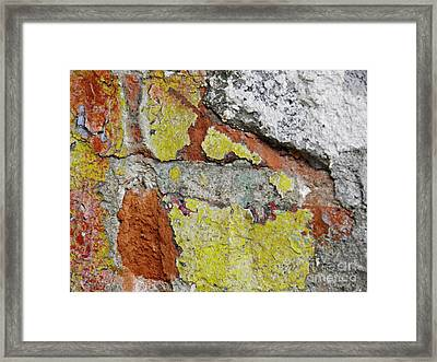 Biography Of A Wall 6 Framed Print by Sarah Loft