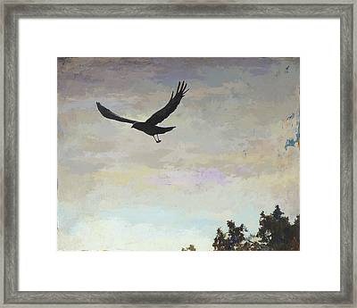 Biosphere #4 Framed Print by David Palmer