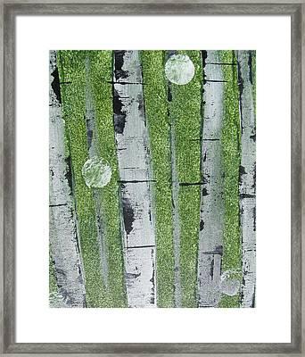 Birch - Green 1 Framed Print by Jacqueline Athmann