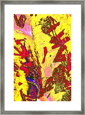 Birch Bark In Yellow And Red Framed Print