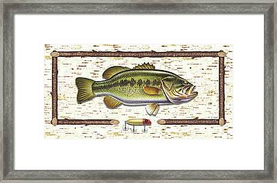 Birch Bass Framed Print