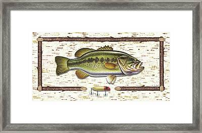 Birch Bass Framed Print by JQ Licensing