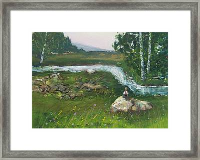 Birch Creek Framed Print
