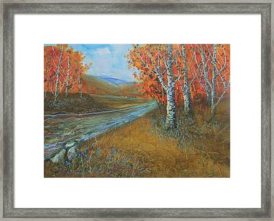 Birch Fall Framed Print