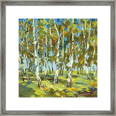 Birch Forest Framed Print by Dmitry Spiros