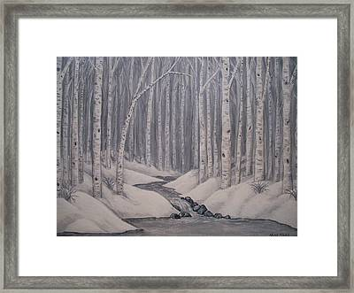 Birch Forest Framed Print by Nora Niles