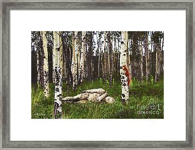 Birch Having A Tree Break Framed Print