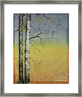 Birch In A Golden Field Framed Print