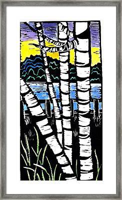 Birch Lake Framed Print by Jane Croteau