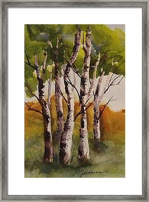 Birch Framed Print by Marilyn Jacobson