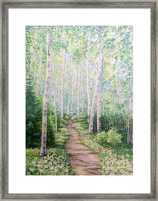 Birch Path Framed Print