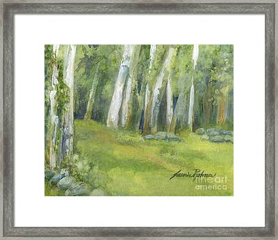 Birch Trees And Spring Field Framed Print