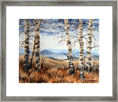 Birch Trees At Crawford Notch -1 Framed Print by Varvara Harmon
