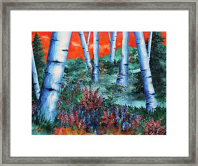 Birch Trees At Sunset Framed Print