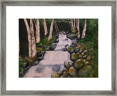 Birch Trees By The Brook Framed Print