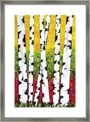 Birch Forest Trees Framed Print by Christina Rollo
