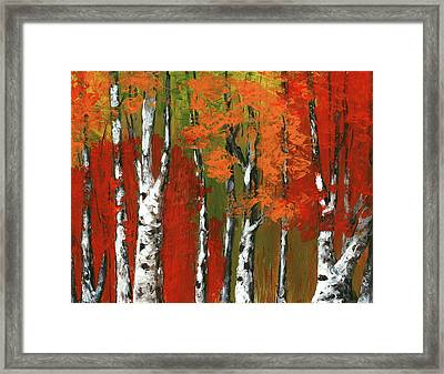 Birch Trees In An Autumn Forest Framed Print by Anastasiya Malakhova