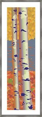 Birch Trees Framed Print by Marian Federspiel