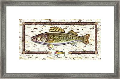 Birch Walleye Framed Print