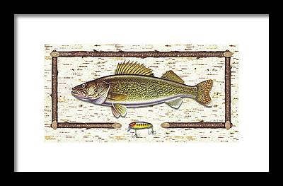 Walleye Framed Prints