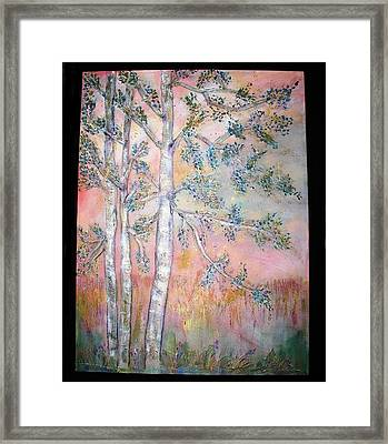 Birch Woods Sold Framed Print by Laurie Alpert