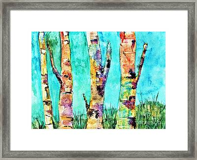 Watercolor Painting Of Birched Trees  Framed Print