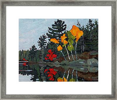 Birches Canoe Lake Framed Print by Phil Chadwick