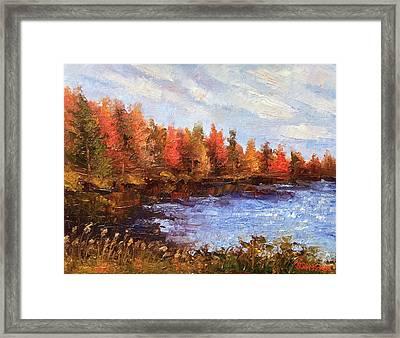 Birchwood Lake Framed Print