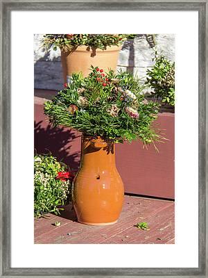 Bird Bottle Arrangement 01 Framed Print