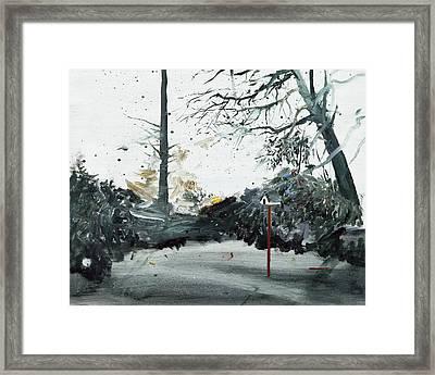 Bird Box Framed Print by Calum McClure