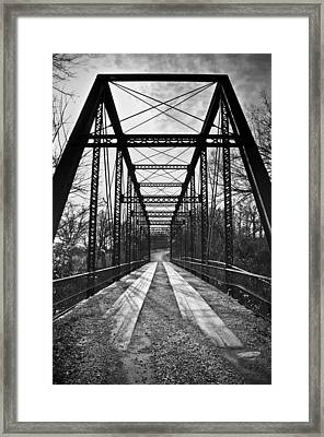 Bird Bridge Black And White Framed Print