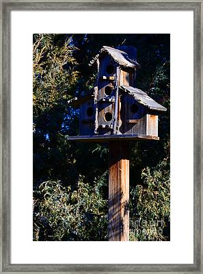 Bird Condos Framed Print