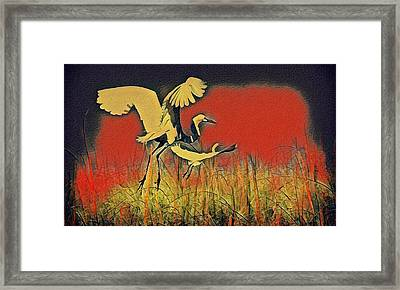Bird Dreams Framed Print