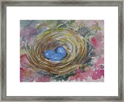 Bird Eggs In Nest Framed Print