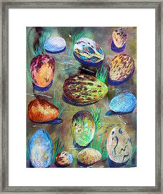 Bird Eggs Framed Print