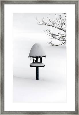 Bird Feeder In Snow Framed Print