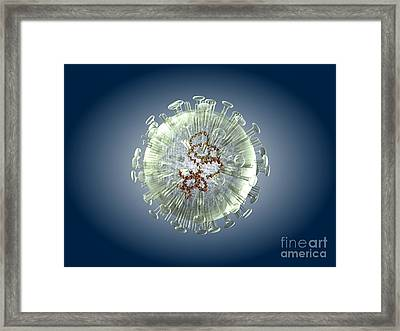Bird Flu Virus Particle, Artwork Framed Print by Springer Medizin