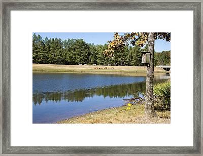 Bird House Lake Framed Print by Ricky Dean
