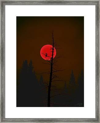 Framed Print featuring the digital art Bird In A Tree by Stuart Turnbull