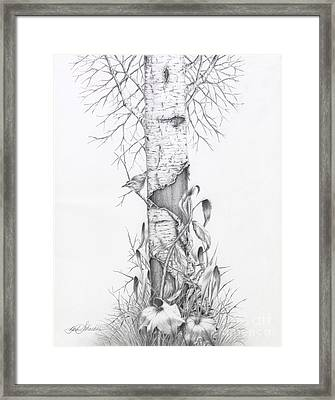 Bird In Birch Tree Framed Print