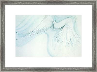 Bird In Flight Framed Print by Denise Fulmer