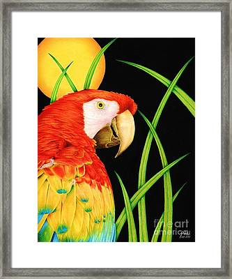 Bird In Paradise Framed Print by Sheryl Unwin