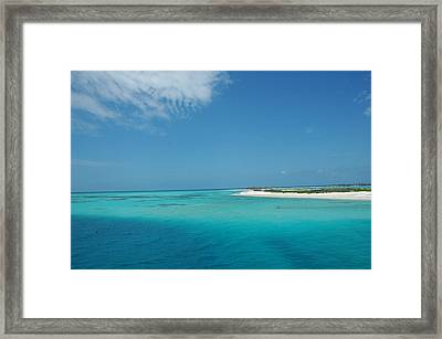 Bird Island Framed Print by Susanne Van Hulst